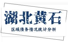 湖北黄石市区域债务情况统计分析