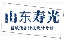 山东寿光市区域债务情况统计分析