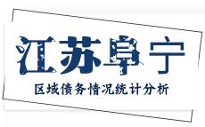 盐城市阜宁县区域债务情况统计分析