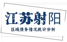 盐城市射阳县区域债务情况统计分析